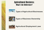 Agriculture Business:  What's the Difference?