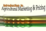Introduction to Agricultural Markets & Pricing