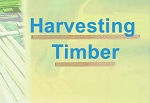 Harvesting Timber