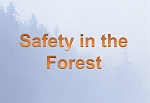 Safety in the Forest