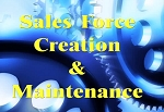 Sales Force Creation & Maintenance