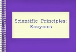 Scientific Principles: Enzymes