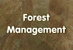 Introduction to Forest Management