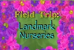 Field Trip: Landmark Nurseries