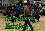 Fitting & Showing of Market Swine