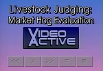 Livestock Judging: Market Hog Evaluation