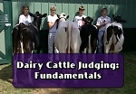 Dairy Cattle Judging: Fundamentals