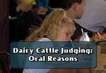 Dairy Cattle Judging: Oral Reasons