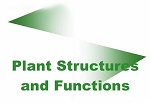 Plant Structures & Functions