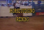 How To Judge Reining