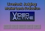 Livestock Judging: Market Lamb Evaluation