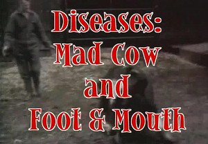 Disease: Mad Cow and Foot & Mouth