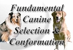 Fundamental Canine Selection & Conformation