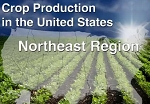 Crop Production in the United States: Northeast Region