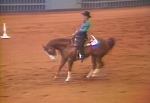 Practice Judging: Western Riding I