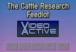 Field Trip: Cattle Research Feedlot