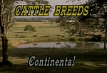 Cattle Breed ID Continental