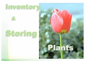 Inventory & Storing Plants