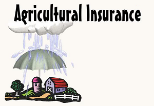 Agricultural Insurance: The Basics