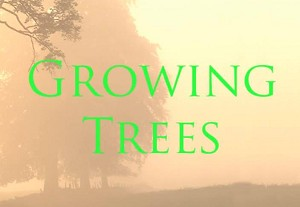 Growing Trees